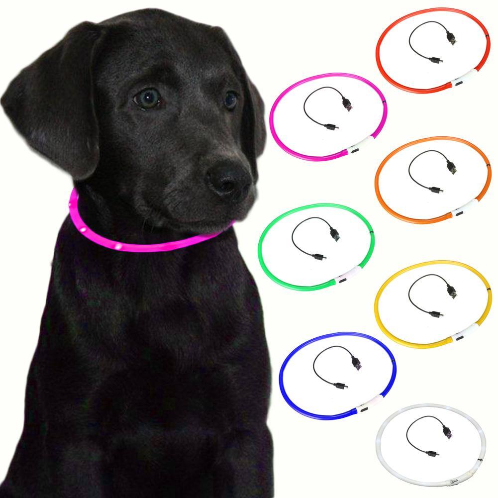 hunde leuchthalsband led blinkhalsband f r leuchtschlauch leuchtendes hundehalsband blinki. Black Bedroom Furniture Sets. Home Design Ideas
